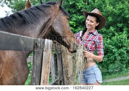 young woman in cowgirl style feeding horse in the farm