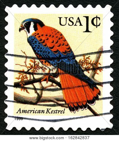 UNITED STATES OF AMERICA - 1ST MARCH 2016: A used postage stamp priinted in America (circa 1999) depicting an illustration of an American Kestrel circa 1999.