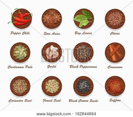 Different kinds of spices on wooden board. Realistic vector illustration. Condiment set used for advertising seasonings, or market and shop products.