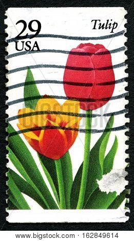 UNITED STATES OF AMERICA - CIRCA 1993: A used postage stamp from the USA depicting an illustration of a Tulip flower circa 1993.