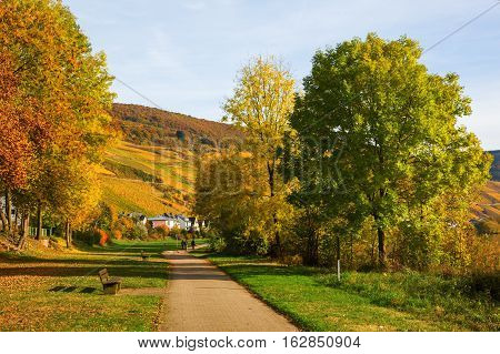 Riverside Walk In Merl, Rhineland-palatinate, Germany