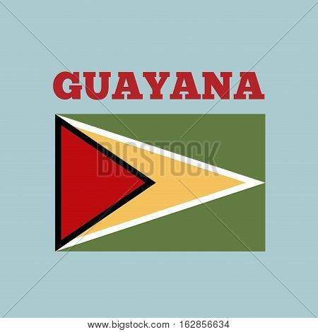 guayana country flag icon over blue background. colorful design. vector illustration