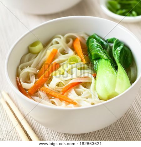 Vegetarian Asian rice noodle soup with bok choy carrots and spring onion photographed with natural light (Selective Focus Focus in the middle of the soup)