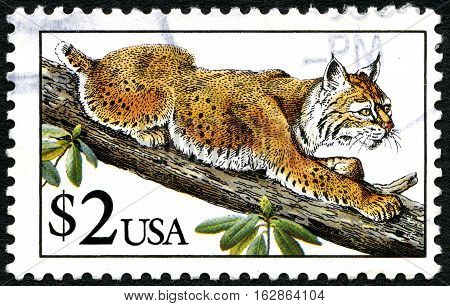 UNITED STATES OF AMERICA - CIRCA 1990 - A used postage stamp from the USA depicting an illustration of a wild Mountain Bobcat circa 1990.