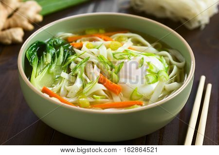 Vegetarian Asian rice noodle soup with bok choy carrot spring onion and a poached egg photographed with natural light (Selective Focus Focus in the middle of the soup)