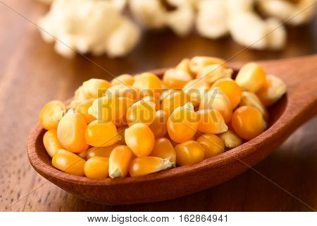 Yellow raw popcorn kernels on wooden spoon with salted popped popcorn in the back photographed with natural light (Selective Focus Focus one third into the kernels)