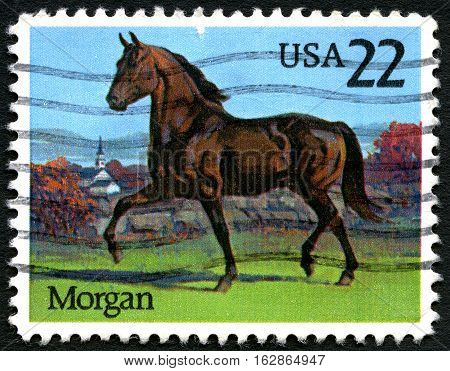 UNITED STATES OF AMERICA - CIRCA 1985: A used postage stamp from the USA depicting an illustration of a Morgan breed horse circa 1985.