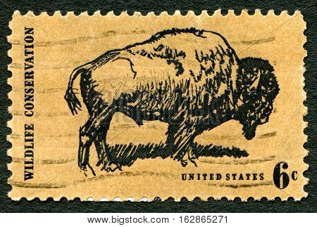UNITED STATES OF AMERICA - CIRCA 1970: A used postage stamp from the USA depicting an illustration of a Buffalo and promoting Wildlife Conservation circa 1970.