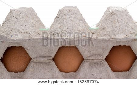 Chicken eggs are very useful product they are loved by many raw and roasted and boiled