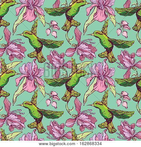 Seamless pattern. Colibri and flowers on green background. Hand drawn image for floral design.