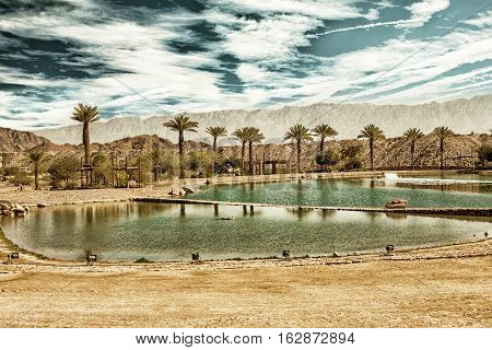 The Timna lake in Timna National park near to Eilat Israel (HDR image with black gold filter)