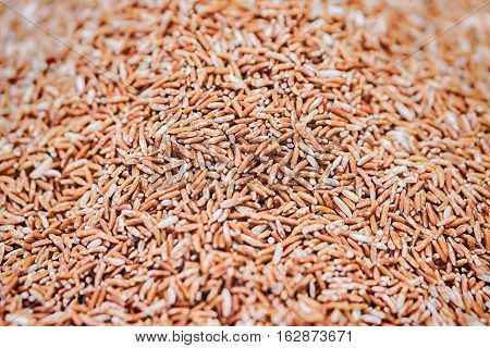The Jasmine Brown Rice close-up and background