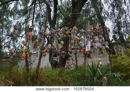 Originally a loving tribute to a dead child the creepy Island of the Dolls in Xochimilco, Mexico is reported to be haunted.