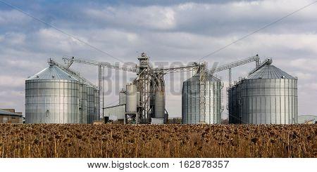 Towers of grain drying enterprise. Panorama. Agricultural enterprise.