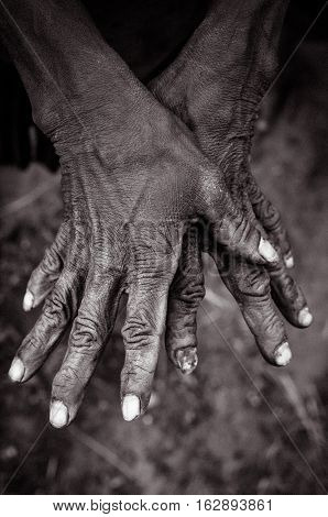 Two Hands Of Woman