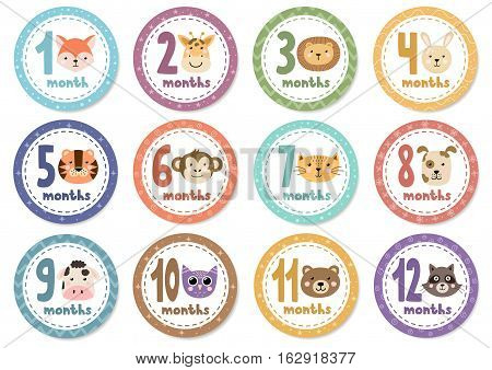 Monthly baby stickers with cute animals. Vector illustration