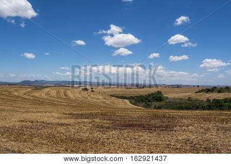 Rural scene sky clouds farm rural agriculture crop