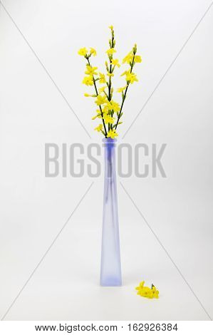A view of yellow flowers in a glass vase on a plain background