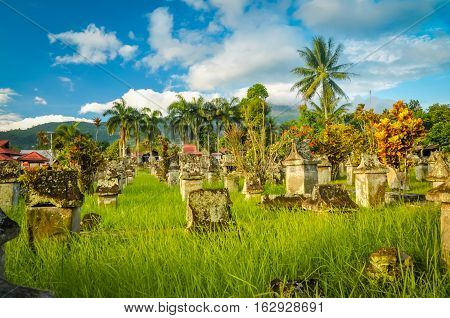 Old Cemetery In Waruga