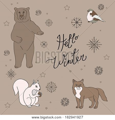 Vector illustration. image of snowflakes forest animals bears squirrels foxes bullfinch. elements for winter and Christmas cards packaging greetings gray brown color
