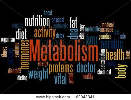 Metabolism, Word Cloud Concept 4