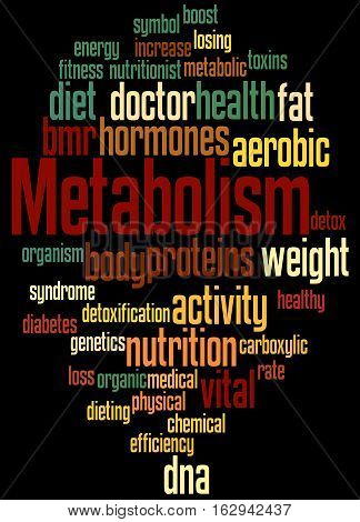 Metabolism, Word Cloud Concept 7