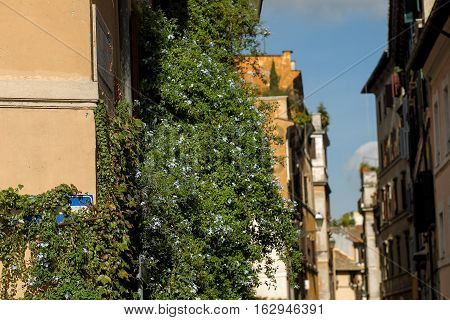 Italian street detail in Rome on a sunny day