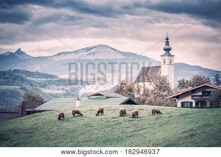 Traditional Vintage Alpine Rural Landscape