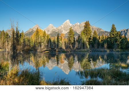 Teton mountains reflect on the Snake river at Schwabacher Landing in Grand Teton National Park Wyoming