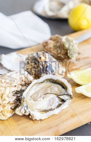 Raw oysters shells - one open and closed ones
