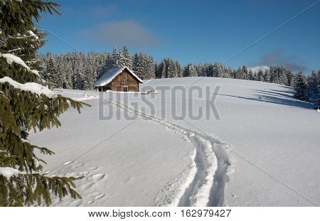 Clear and sunny winter day. Forest covered with snow against blue sky background. Ski-track is in the foreground. Little tourists figures are seen in the edge of woods.