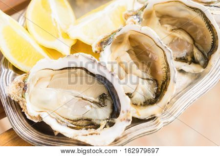 Raw fresh open oysters shells close up