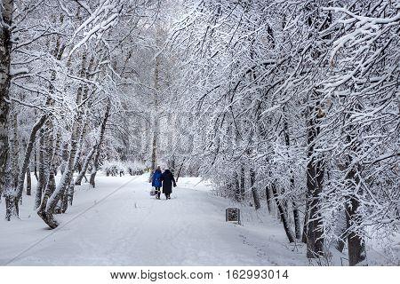 City Berdsk Novosibirsk region Western Siberia Russia - November 25 2015: City landscape after heavy snowfall