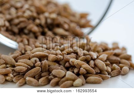 Pile of the uncooked spelt wheat with pollen near glass bowl. Healthy lifestyle concept. Closeup macro shot.