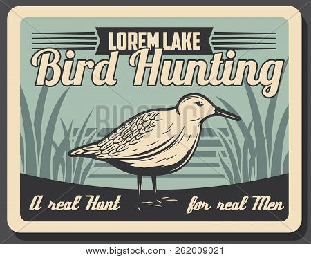 Hunting Open Season For Wild Birds, Retro Poster Of Hunter Society Or Hunt Club. Vector Forest Euras