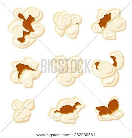 Popcorn Kernels. Cartoon Roasted Sweetcorn Vector Isolated Signs. Snack Kernel Corn, Popcorn Food Fo