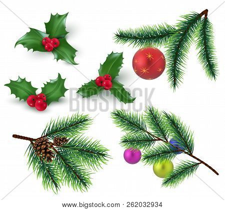 Christmas Decoration. Realistic Fir Tree Branches And Red Berries, Holly Leaves And Christmas Bauble