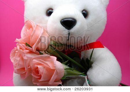 teddy bear holding pink roses