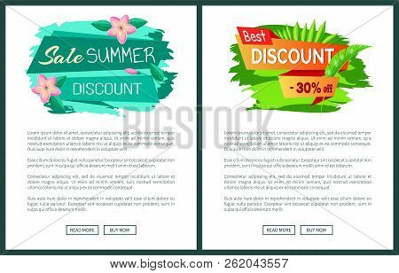 Summer Big Sale Discount 30 Off, Web Posters, Stickers And Gentle Flowers, Promo Emblem Design, Tag