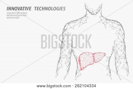 Human Liver Hepatitis Treatment Medicine Business Concept. Disease Prevention Health Care Medical Ce
