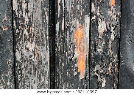 Dark Wooden Boards, Planks. Naturally Aged Wood, Natural Brushing Process. The Top View. Close-up. T