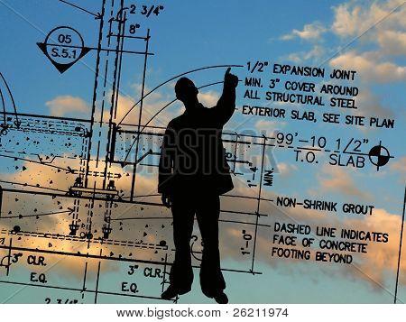 Contractor's Details
