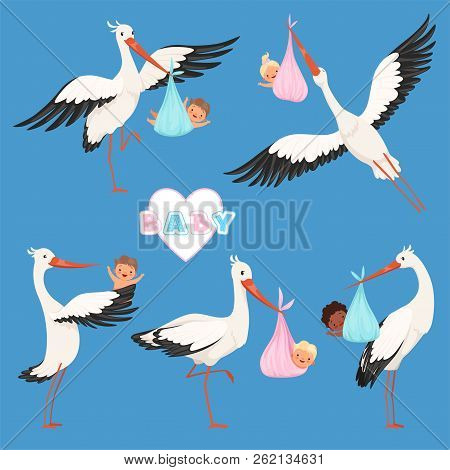 Flying Stork Baby. Bird Delivery Newborn Cute Little Childrens Vector Carry Stork Characters Isolate