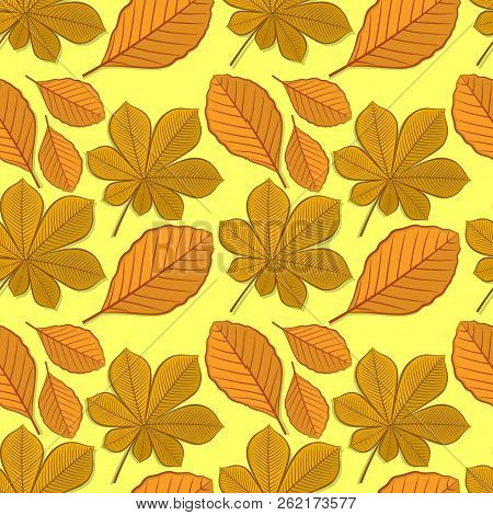 Seamless Pattern With Chestnut And Beech Autumn Leaves. Vector Illustration.