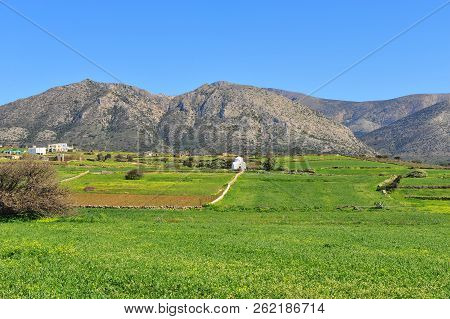 Beautiful Natural Landscape With Traditional White Church In Green Field