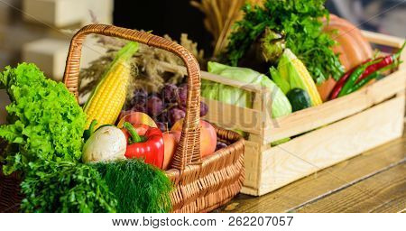 Homegrown Vegetables. Fresh Organic Vegetables In Wicker Basket And Wooden Box. Fall Harvest Concept