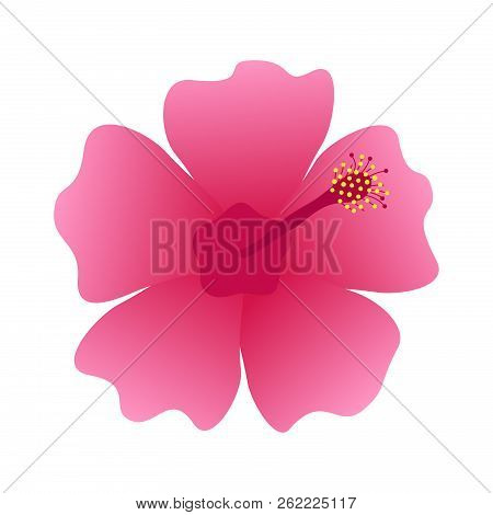 Hibiscus Flower Blossom, Vector Illustration Icon, Isolated On White Background. Rose Mallow, Marsh