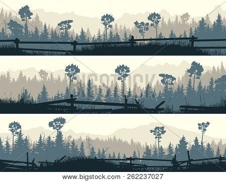 Set Of Horizontal Banners Coniferous Forest With Meadows And Cattle Fences.