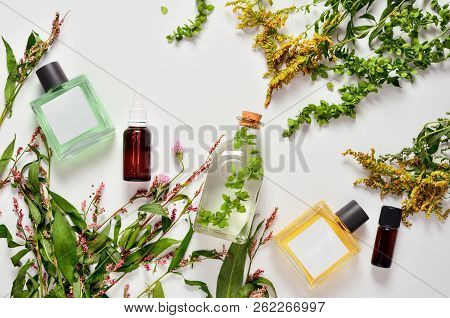 Spa Healing Cosmetic Products Based On Medicine Herbs, Natural Feminine Skin Care Products, Flat Lay
