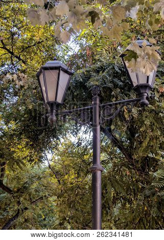 Lighting Streetlight Fragment Against The Background Of Leaves In The Park. Landscape. Outdoors. Day